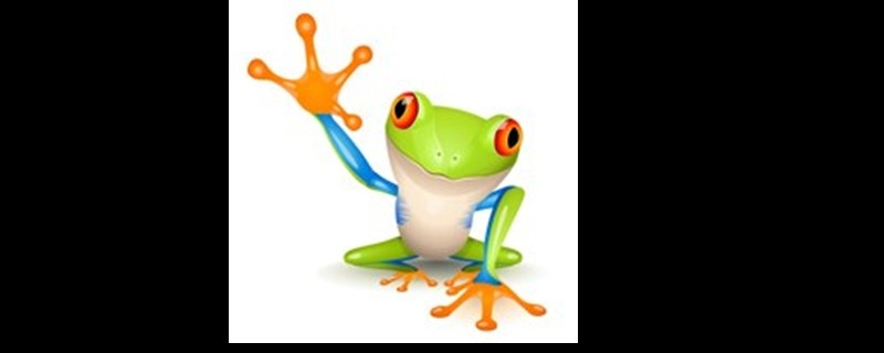 Travelfrog