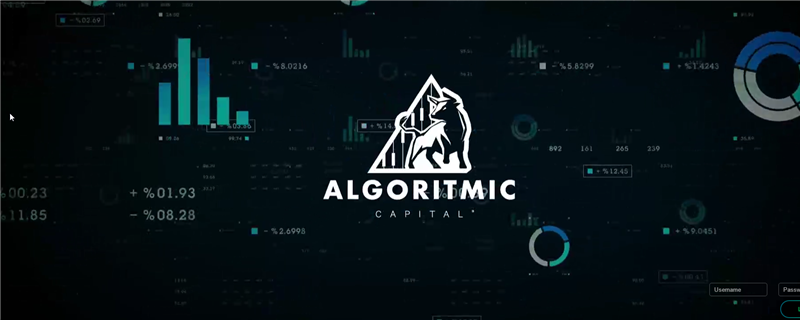 Algoritmic Capital, Ltd.